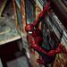 Spiderman-6193